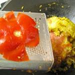 indicke paradajkova stava